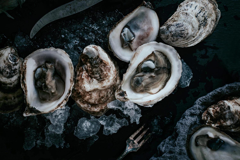 Hochwertige Steaks und kailfornische Sushi-Kreationen - seafood club teaser